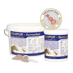 Equipur ferrochel Ergänzungsfuttermittel 3 kg