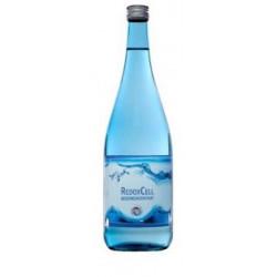 Basenkonzentrat RedoxCell 1 Liter