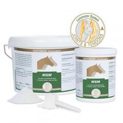 MSM 2 kg für kräftige Gelenke und Knorpel Einzellfuttermittel Equipower