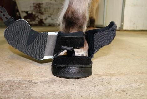 Active Jogging Shoe anziehen schliessen