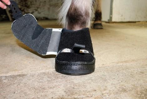 Active Jogging Shoe Klettverschluss schliessen