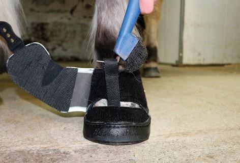 Active Jogging Shoe anziehen festziehen