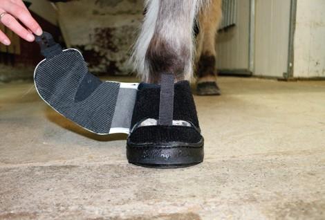 Active Jogging Shoe anziehen Klettverschluss schliessen